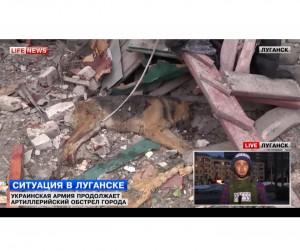 Ukraine keeps on shelling city of Lugansk, dozens of unarmed civilians dead
